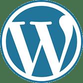 custom wordpress web design development services